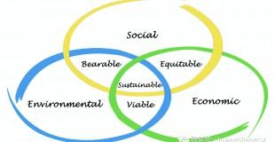 20年的社会责任审核把这4类环保项目推到了风口